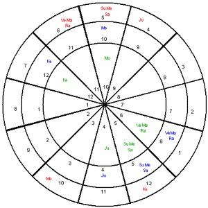 Vedic Astrology Sudarshan Chakra Chart
