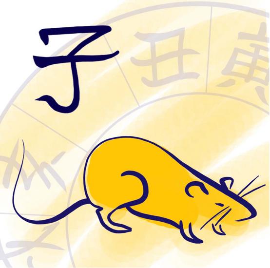 Chinese Rat 2017 2016