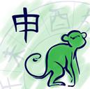 chinese monkey 2017 2016