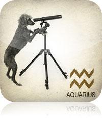 Aquarius Pet Horoscope 2017
