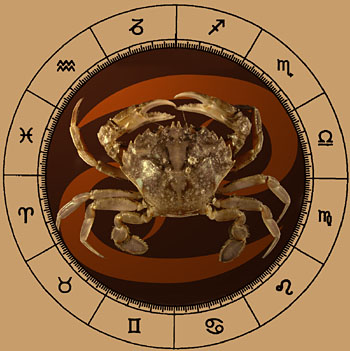 Cancer - The Crab - Zodiac Personality