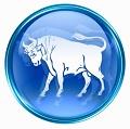 Taurus - The Bull - Zodiac Personality